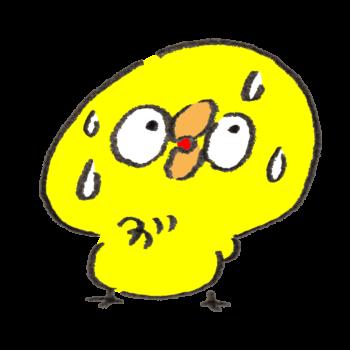心配性なトリ